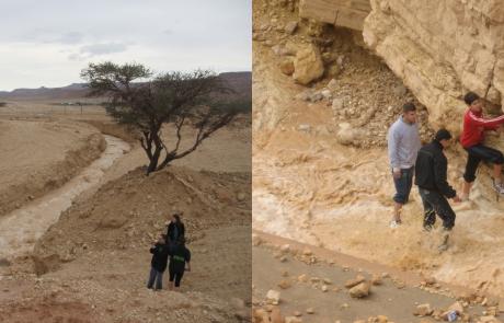 שטפונות בדרום הערבה – השפעתם על תפקוד המערכת האקולוגית בשטחים הפתוחים ועל התנהלות הציבור